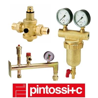 Продукция PINTOSSI+C